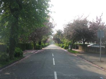 Nottingham 096